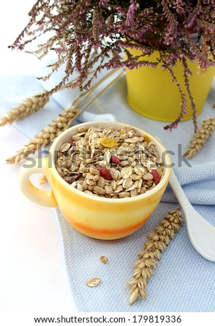 muesli of oats with raisin in cup - stock photo