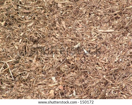 Mulch and dirt background - stock photo