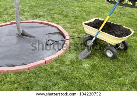 Mulch is waiting to be dumped in the cart. Weed barrier is nicely lay ed around the tree with edging bricks. - stock photo