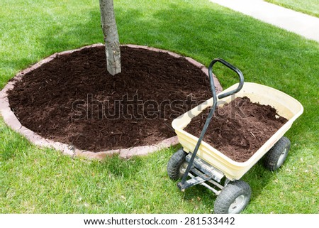 Mulch work around the trees growing in the backyard during springtime with a small yellow metal wheelbarrow full of organic mulch from the nursery standing alongside a round flowerbed around a sapling - stock photo
