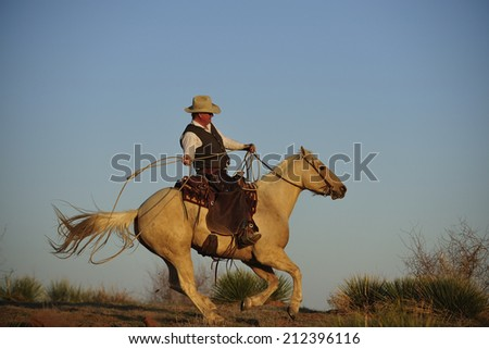 Muleshoe, Texas, USA, - March. 28. 2012: Cowboy chasing cow with rope - stock photo