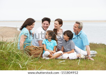Multi Generation Family Having Picnic By Sea