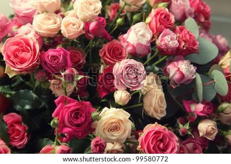 multicolor roses bouquet - stock photo