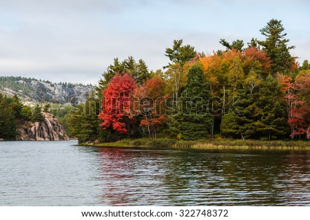 Multicolored fall trees at a lake edge of Killarney Provincial Park, Canada - stock photo
