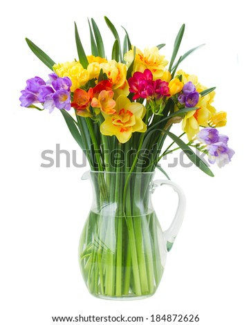 multicolored  freesia and daffodil  flowers in vase   isolated on white background - stock photo