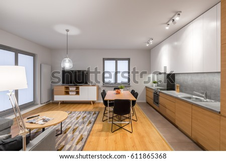 Multifunctional, Modern Loft Apartment With Kitchen, Dining Area, Tv Living  Room And Hardwood