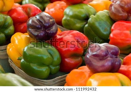 Multiple Colorful Fresh Bell Peppers in Baskets - stock photo