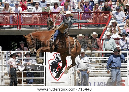 Multiple World Champion Saddle Bronc rider, Dan Mortensen, makes a successful ride at the 2005 Cheyenne Frontier Days rodeo. - stock photo