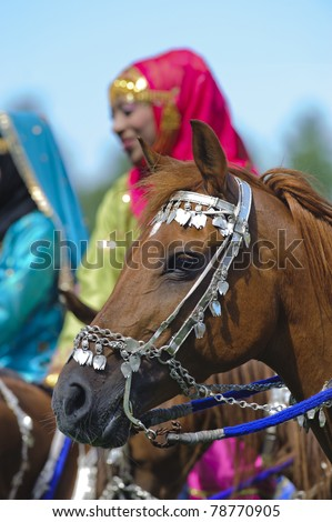 "MUNICH, GERMANY - JUNE 4:  arabian horse of the ""Royal Cavalry of Oman"" while a public show at international equestrian challenge ""Pferd International 2011"" at June 4, 2011 in Munich, Germany"