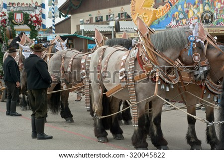 MUNICH, GERMANY  - SEPT. 20, 2015: Spatenbrau Beer Carriage Entertaining Crowds at the annual Okotoberfest. The Festival runs from September 19th until October 4th 2015 in Munich, Germany. - stock photo