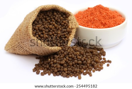 Muriate of potash and Diammonium phosphate fertilizer over white background - stock photo