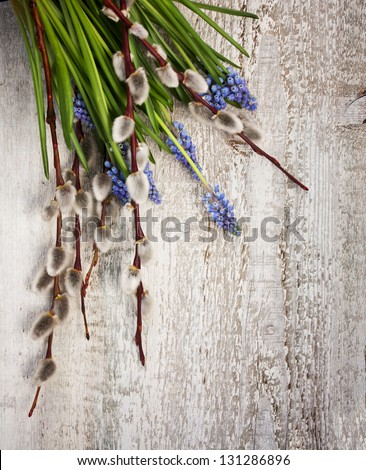 Muscari and Willow Twigs - stock photo