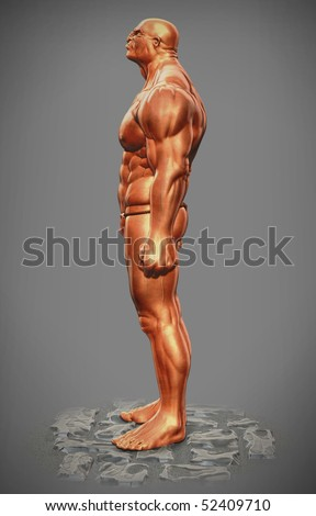 muscle man figure side view - stock photo