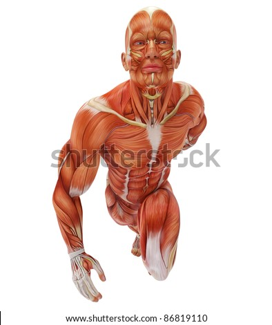 muscle man front running pose - stock photo