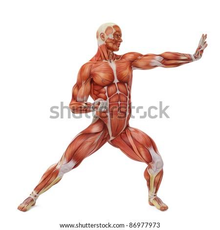 muscle man karate pose - stock photo