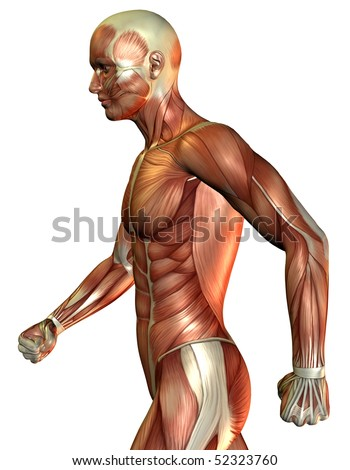 Muscle man over the side - stock photo