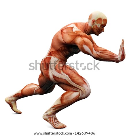 muscle man puching - stock photo