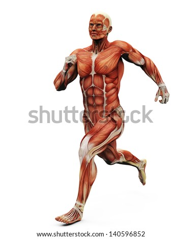 muscle man running back - stock photo