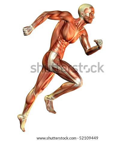 Muscle man running study - stock photo