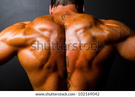 muscular bodybuilder's back on black background - stock photo