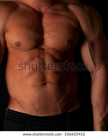 Muscular male torso of bodybuilder - stock photo