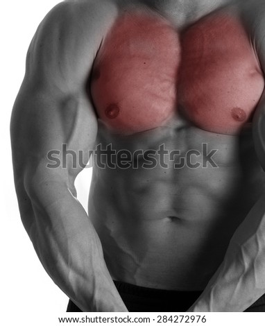 Muscular male torso with chest selected on white background