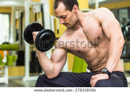 Muscular power athletic male bodybuilder sitting and training his biceps with dumbbells in fitness center. - stock photo