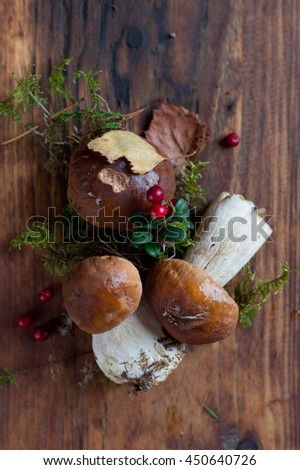 Mushroom boletus on wooden background, selective focus - stock photo