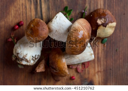 Mushroom boletus on wooden background, selective focus