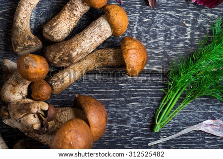 Mushroom Boletus over Rustic Wooden Background. Autumn Mushrooms