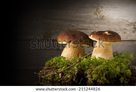 Mushroom Boletus over Wooden Background. Autumn Cep Mushrooms - stock photo