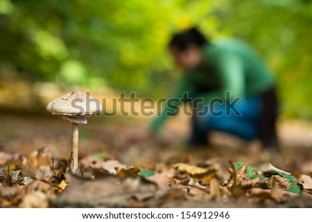 Mushroom in the forest with the mushroom picking girl in the background - stock photo