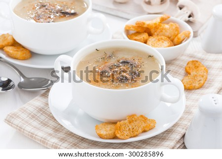 mushroom soup puree with croutons, horizontal
