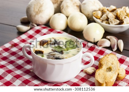 Mushroom soup with croutons in white bowl - stock photo