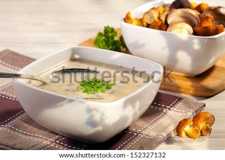 mushroom soup with fresh wild mushrooms - stock photo