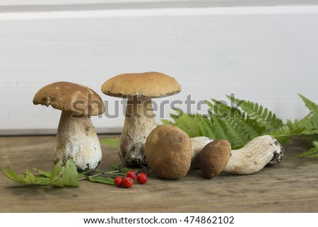 Mushrooms and mountain ash on a wooden background