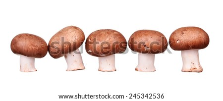 mushrooms and raw mushrooms isolated on white background - stock photo