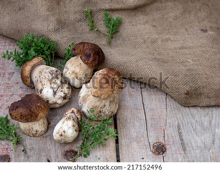 Mushrooms ceps boletus with herbs on wooden background. Copyspace above - stock photo