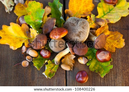 mushrooms, chestnuts and other autumnal decorations on wooden board, birds eye view