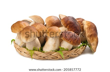 Mushrooms in a  basket isolated on white - stock photo