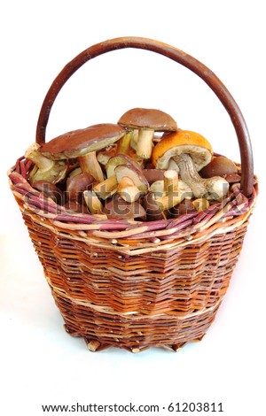 mushrooms in basket on white backgrounds - stock photo