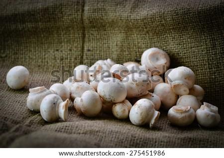 Mushrooms on a hessian background - stock photo