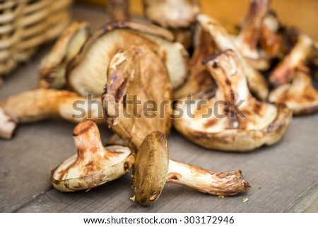 Mushrooms - Paxillus involutus (Paxillaceae) laying on a wooden table and the basket in blur in a backstage - stock photo
