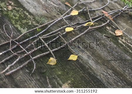 Musical notes conception. Wooden musical notes and leaves - stock photo