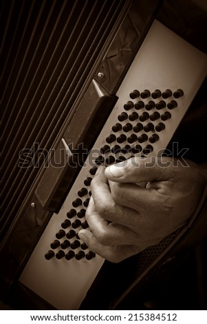 musician playing accordion - stock photo