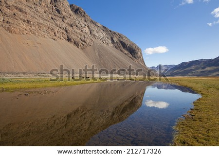 Musk oxen by calm reflecting lake in arctic valley, Greenland - stock photo