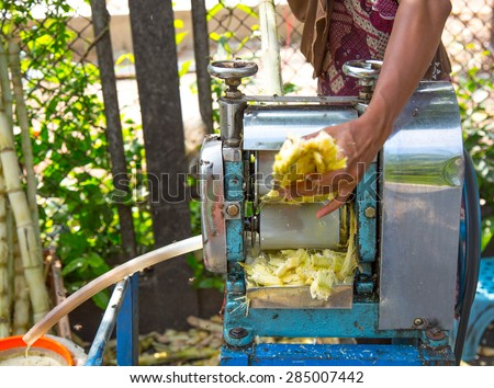 Muslim Woman Using Roller Mill To Extract Sugarcane Juice