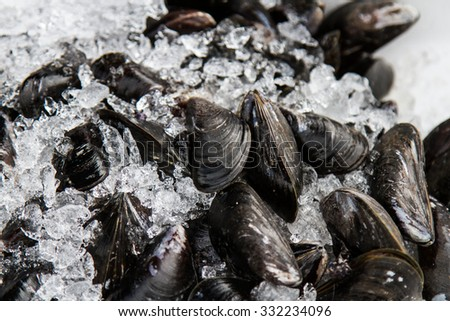 Mussels are black ice on the market in France - stock photo