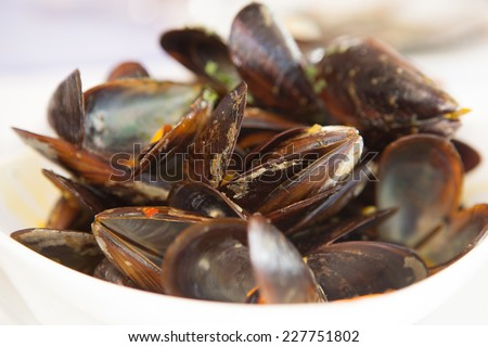 Mussels cooked in wine . Close up  - stock photo