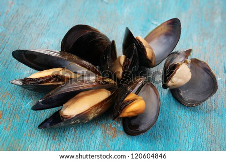 Mussels in shell on blue wooden table - stock photo